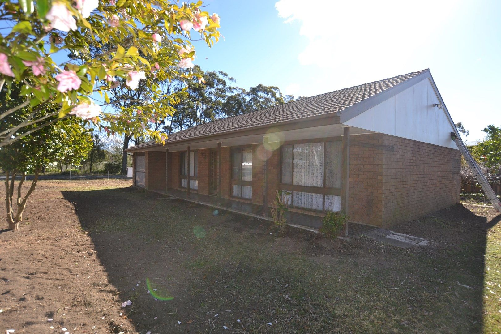 8 Orchid Street, Colo Vale NSW 2575, Image 0