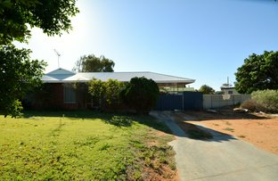 Picture of 13 Tuckey Court, Carnarvon WA 6701