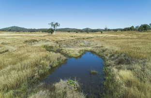 Picture of Lot 27 Tuites Lane, Biarra QLD 4313