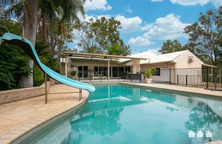 Picture of 9 Wille Court, Ormeau QLD 4208