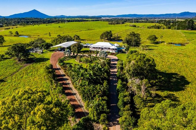 Picture of 1253 Mossman Mount Molloy Rd, JULATTEN QLD 4871