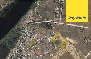 Picture of Stage 2 Avoca Dell Estate, Murray Bridge SA 5253