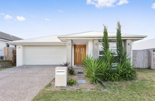 Picture of 9 Foxtail Road, Ripley QLD 4306