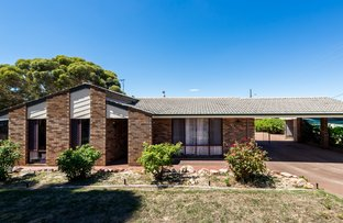 Picture of 133 Narrakine Rd, Narrogin WA 6312