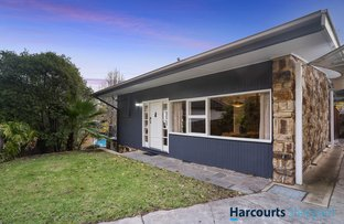 Picture of 8 Ford Avenue, Torrens Park SA 5062
