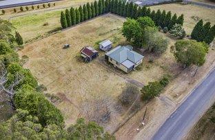 381 Waratah Road, Mangrove Mountain NSW 2250