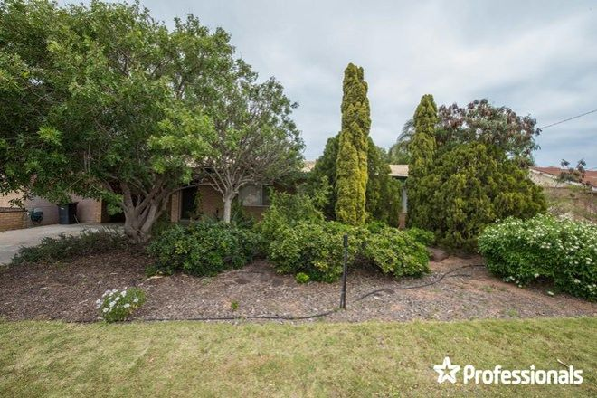 Picture of 3 Gale Road, WONTHELLA WA 6530