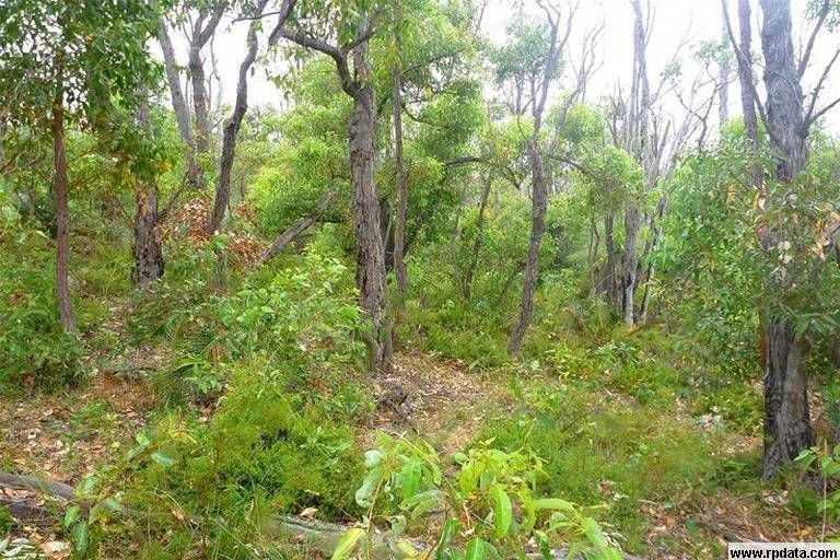 Lot 804 Brook Lookout, North Dandalup WA 6207, Image 0
