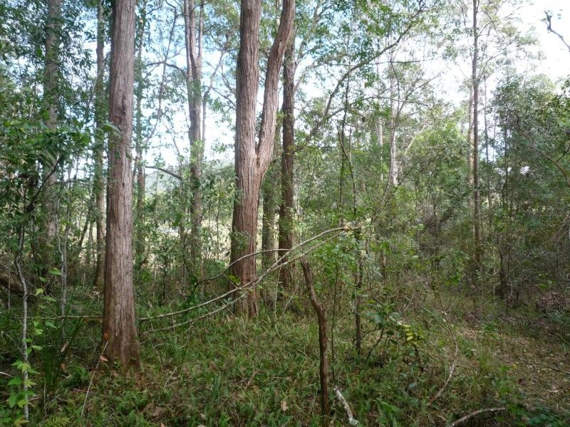 49 Old Gympie Rd, Yandina QLD 4561, Image 2