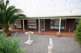 Picture of 4 Grace Street, Edithburgh SA 5583