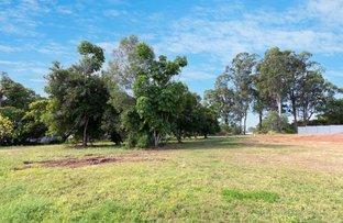 Picture of 20 Macadamia Drive, Tinana QLD 4650