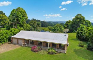 Picture of 10 Nadi Lane, North Maleny QLD 4552