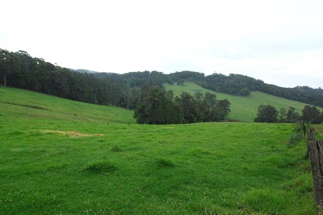 Picture of Lot 12 Schultz Road, BILLYS CREEK NSW 2453