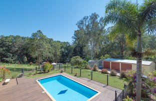 Picture of 115 Cudgerie Drive, Black Mountain QLD 4563