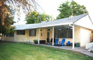Picture of 17 ORANA AVENUE, Moree NSW 2400