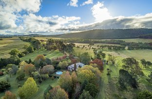 Picture of 345 Black Swamp Road, Tenterfield NSW 2372