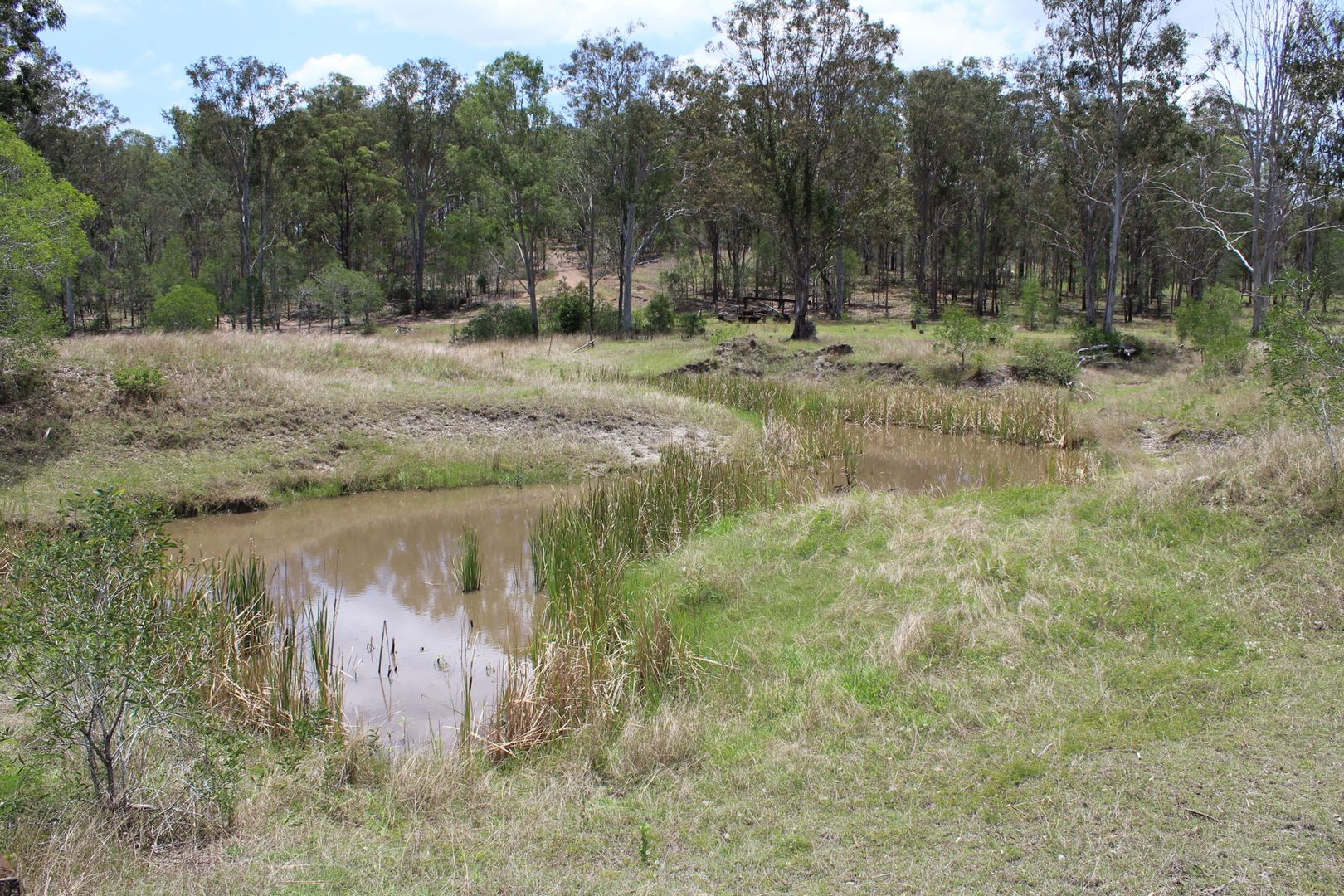 Lot 205 - 529 Netherby Road, Gundiah QLD 4650, Image 0