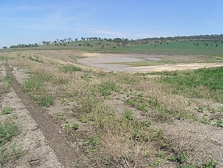 """Wilga"", Warialda NSW 2402, Image 1"