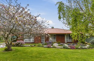 Picture of 5 Lark Place, Mount Gambier SA 5290