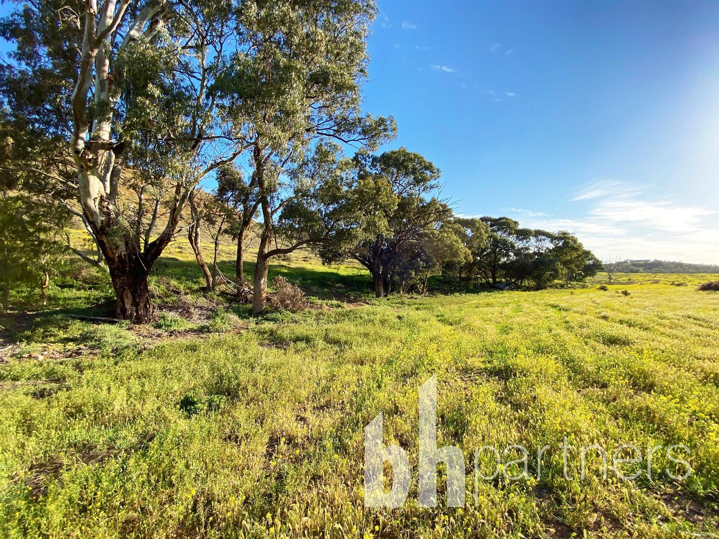 59 Long Gully Road, Mannum SA 5238, Image 0