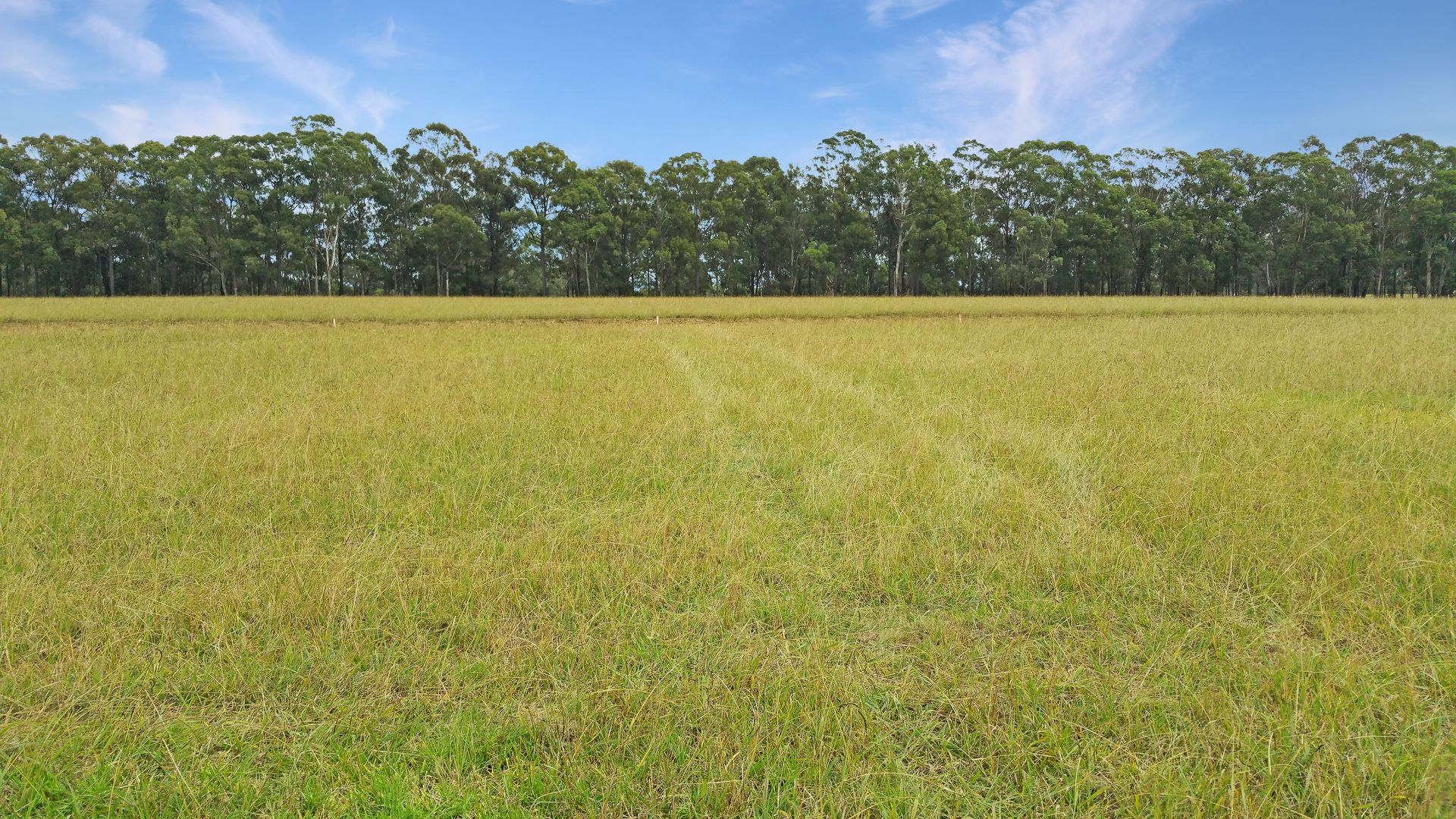Lot 125 Greenbridge East, Wilton NSW 2571, Image 0