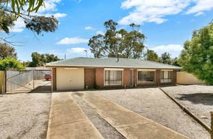 Picture of 13 Harwood Place, Andrews Farm SA 5114