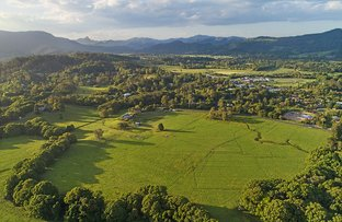 Picture of 113 Left Bank Road, Mullumbimby NSW 2482