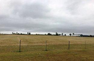 Kentville QLD 4341