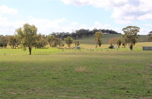 Picture of 1-4 Old Bundarra Road, Inverell NSW 2360