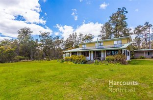 Picture of 338 Gillespies Road, Nabowla TAS 7260