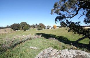 262 Gumms Road, Harolds Cross NSW 2622