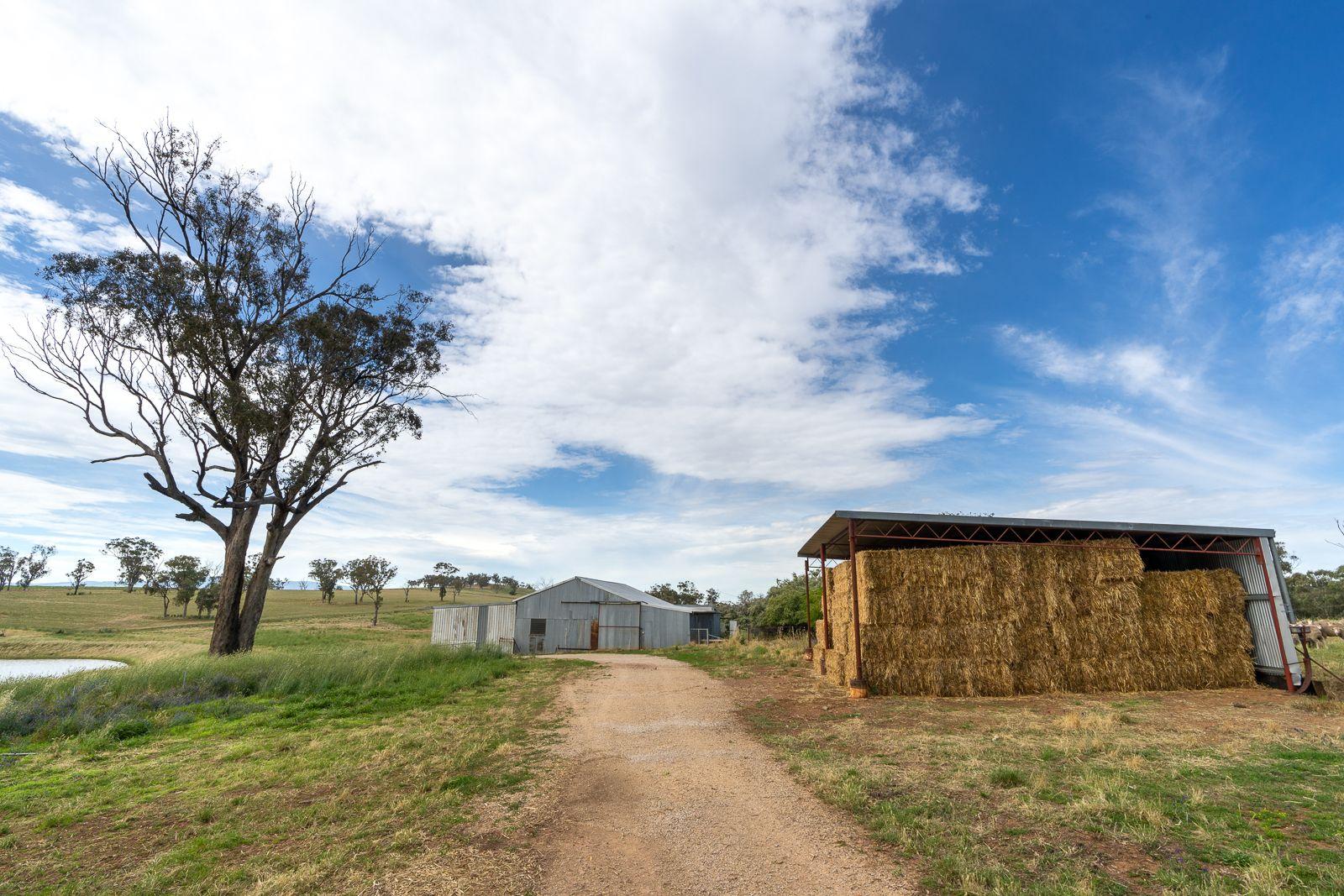 606 Peabody Road, Orange NSW 2800, Image 2