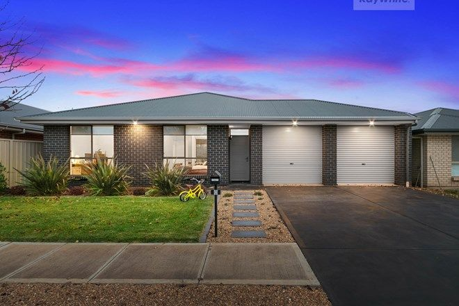 Picture of 8 Lawes Terrace, REID SA 5118