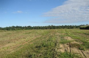 Picture of Lot 1 Bruce Hwy Silky Oak Street, Tully QLD 4854