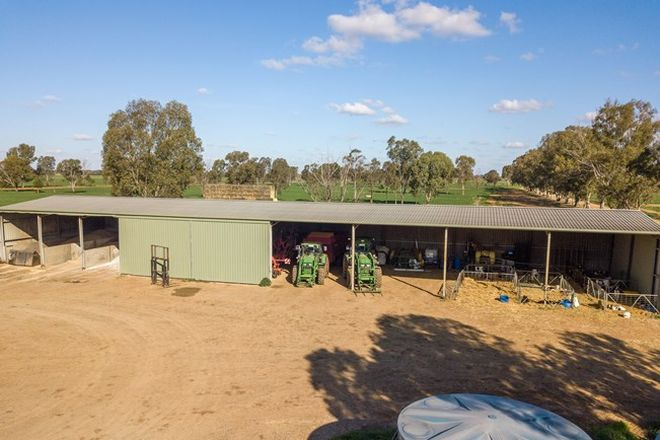 Picture of 183 South Coree Road, FINLEY NSW 2713