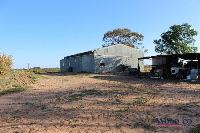 Picture of 44 Lusty Lane, NYAH WEST VIC 3595