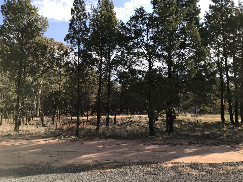 10 Christie Drive, Gilgandra NSW 2827, Image 1