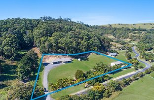 Picture of 19 Bopple Nut Court, Cobaki NSW 2486
