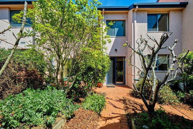 Picture of 123 Sugarloaf Circle, PALMERSTON ACT 2913