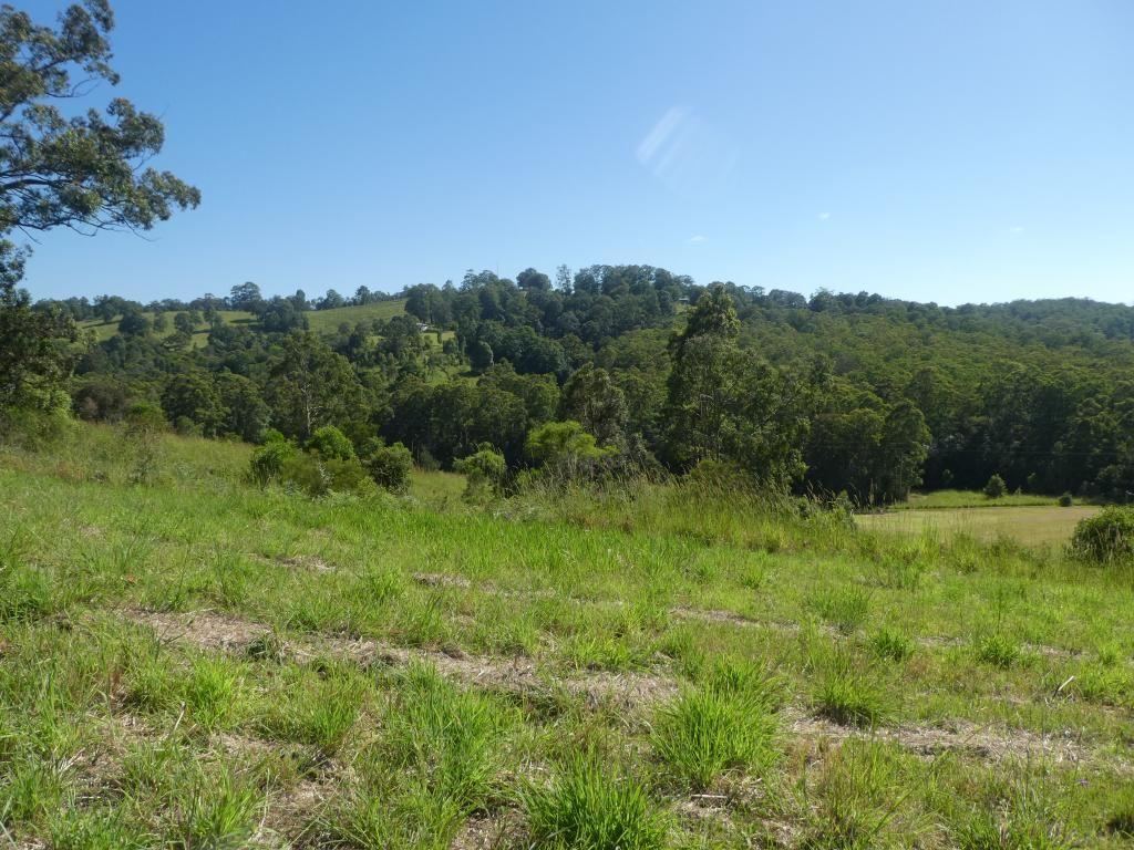 Nabiac NSW 2312, Image 1