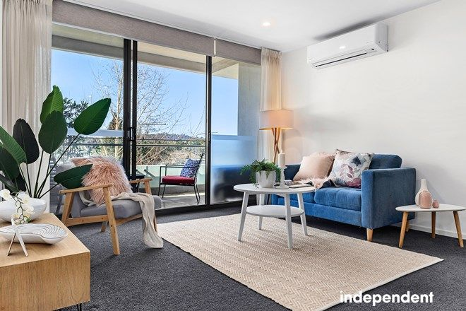 Picture of 22/7 Irving Street, PHILLIP ACT 2606