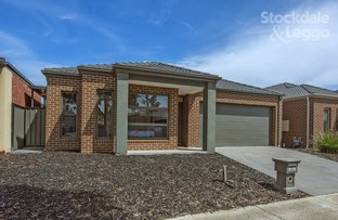19 Donnelly Circuit, South Morang VIC 3752