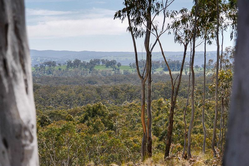 140 Greenridge Road, Taralga NSW 2580, Image 0