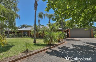 Picture of 59 Azolia Street, Red Cliffs VIC 3496