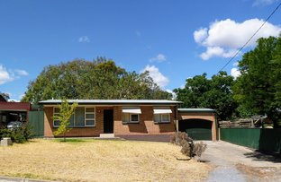 Picture of 3 Wynyard Place, Redwood Park SA 5097