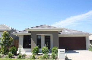 Picture of 40 McVeigh Street, Pimpama QLD 4209