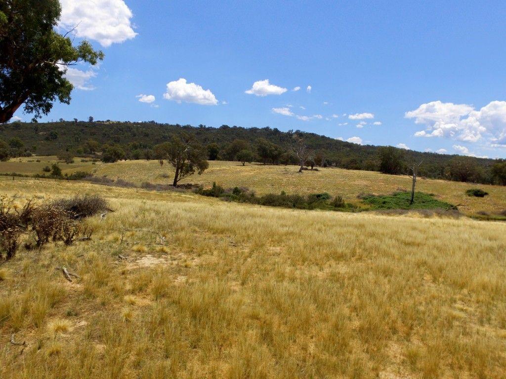 Lot 10 Montana Road, Tuena NSW 2583, Image 1