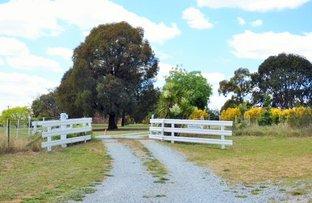 """""""Karangal""""/15 Allmans Street, Harden NSW 2587"""