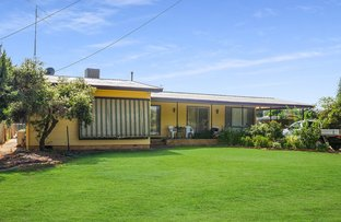 Picture of 10 Canal St, Leeton NSW 2705