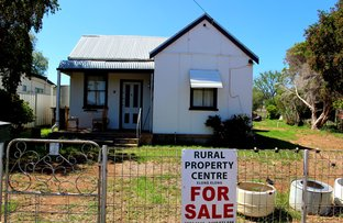 Picture of 5 Binnaway Road, Merrygoen NSW 2831